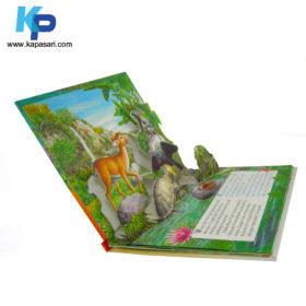Board Book